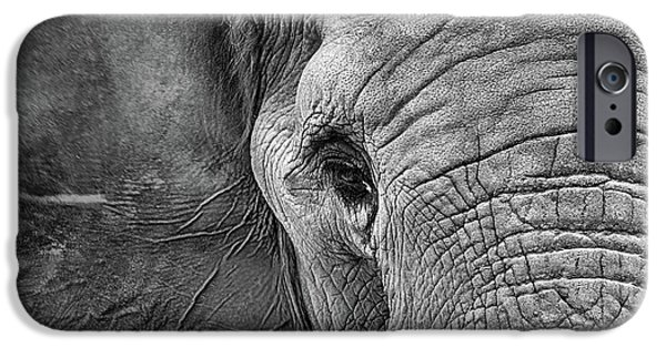 The Elephant In Black And White IPhone 6 Case