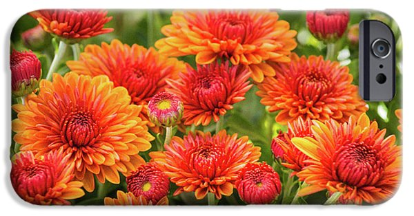 IPhone 6 Case featuring the photograph The Fall Bloom by Bill Pevlor