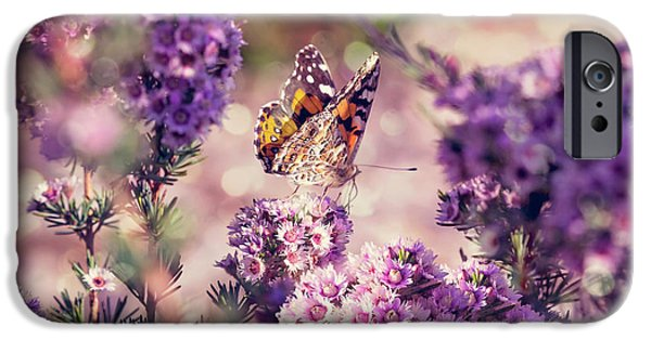 IPhone 6 Case featuring the photograph The First Day Of Summer by Linda Lees