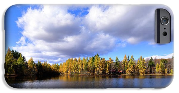 IPhone 6 Case featuring the photograph The Golden Forest At Woodcraft by David Patterson
