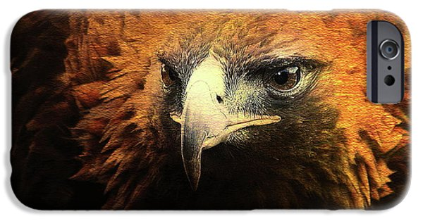 Red Tail Hawk Digital Art iPhone Cases - The Golden Hawk Locks On Target . Square . R3593 iPhone Case by Wingsdomain Art and Photography