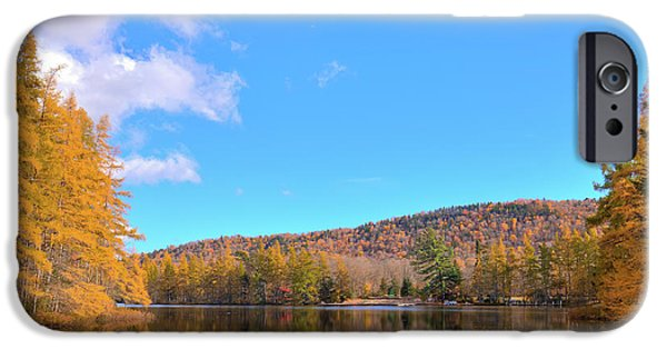 IPhone 6 Case featuring the photograph The Golden Tamaracks Of Woodcraft Camp by David Patterson