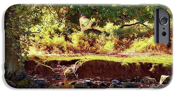 Sky iPhone 6 Case - The River Lin , Bradgate Park by John Edwards