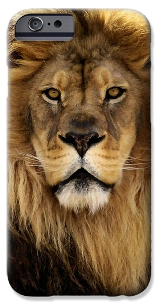 Lion iPhone Cases - Thy Kingdom Come iPhone Case by Linda Mishler