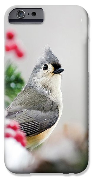 IPhone 6 Case featuring the photograph Titmouse Bird Portrait by Christina Rollo