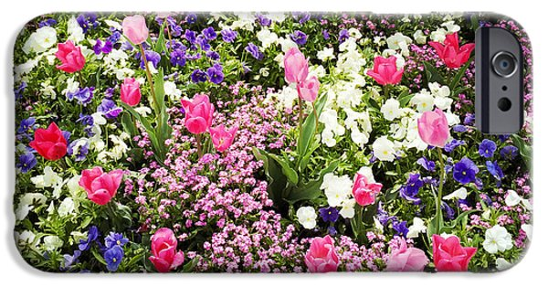 Tulips And Other Colorful Flowers In Spring IPhone 6 Case