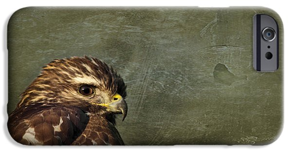 Fauna iPhone Cases - Visions of Solitude iPhone Case by Evelina Kremsdorf