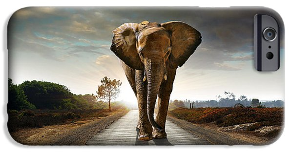 Savannah iPhone Cases - Walking Elephant iPhone Case by Carlos Caetano