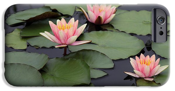 IPhone 6 Case featuring the photograph Water Lilies by Jessica Jenney