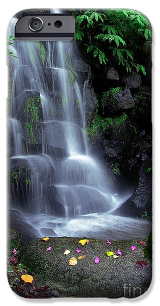 Nature iPhone Cases - Waterfall iPhone Case by Carlos Caetano