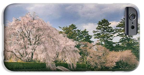 IPhone 6 Case featuring the photograph Weeping Cherry In Bloom by Jessica Jenney