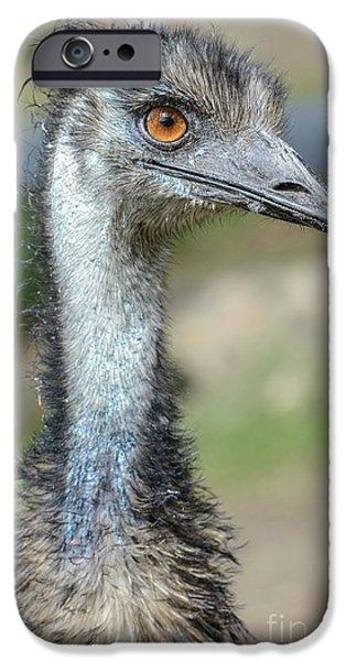 Emu 2 IPhone 6 Case