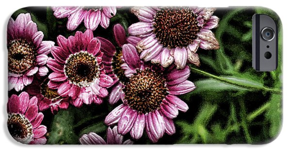 Wet Petals iPhone Cases - Wet Petals iPhone Case by Bonnie Bruno