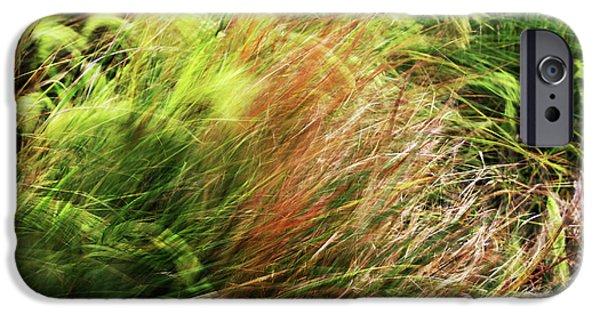 Windblown Grasses IPhone 6 Case by Nareeta Martin