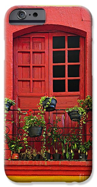 Flowerpot iPhone Cases - Window on Mexican house iPhone Case by Elena Elisseeva