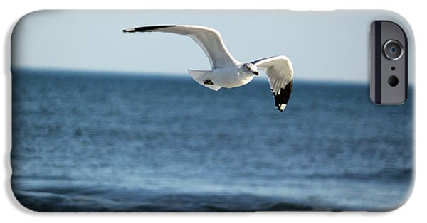 Flying Seagull iPhone Cases - Wings Over the Water iPhone Case by Suzanne Gaff