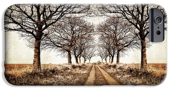 Vanishing iPhone Cases - Winter Avenue iPhone Case by Meirion Matthias