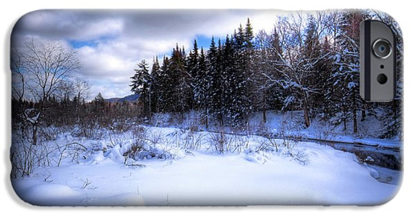 IPhone 6 Case featuring the photograph Winter Highlights by David Patterson