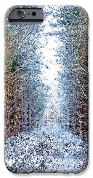 Wolf Picture Art iPhone Cases - Winter Path iPhone Case by Svetlana Sewell
