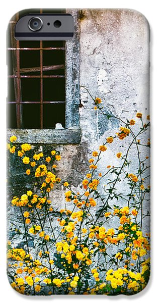 IPhone 6 Case featuring the photograph Yellow Flowers And Window by Silvia Ganora