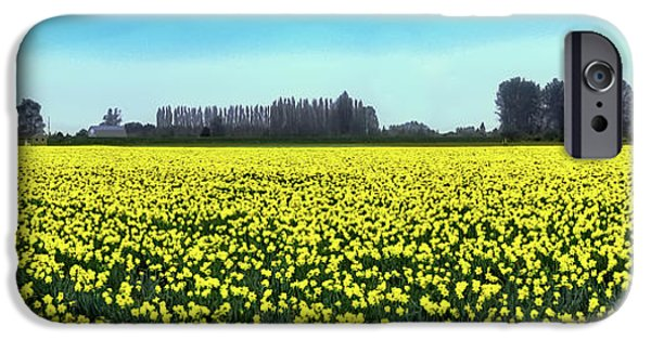 Yellow Tulip Fields IPhone 6 Case by David Patterson