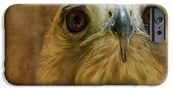 Red Tail Hawk Digital Art iPhone Cases - Your Majesty iPhone Case by Lois Bryan