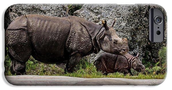 Greater One Horned Rhino iPhone 6 Cases   Fine Art America