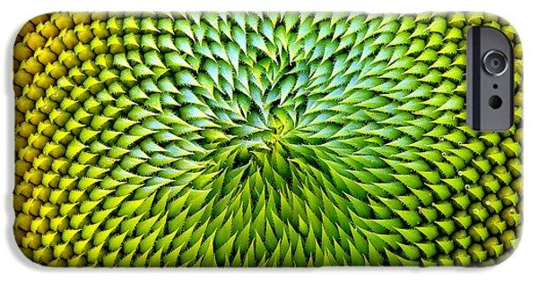 Sunflower Seeds iPhone 6 Case - Beautiful Warm Sunflower Close by Danielo