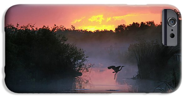 Early iPhone 6 Case - Everglades National Park At Sunrise by Brian Lasenby