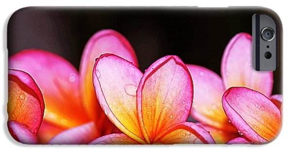 Red Rose iPhone 6 Case - Flowers by Ismed photography ss