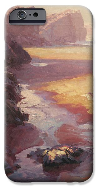 Pacific Ocean iPhone 6 Case - Hidden Path To The Sea by Steve Henderson