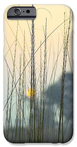 Landscapes iPhone 6 Case - morning Star by Ravi Bhardwaj