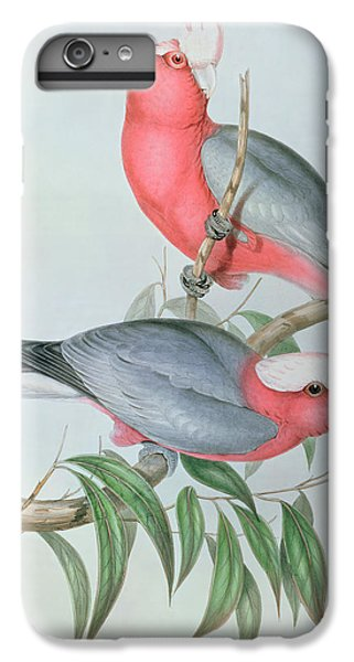 Cockatoo iPhone 6 Plus Case -  Birds Of Asia by John Gould