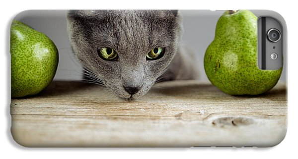 Cat And Pears IPhone 6 Plus Case by Nailia Schwarz