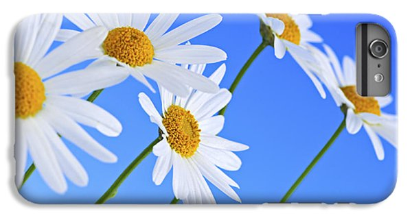 Daisy Flowers On Blue Background IPhone 6 Plus Case by Elena Elisseeva