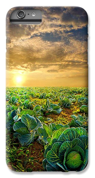 Fall Harvest IPhone 6 Plus Case by Phil Koch