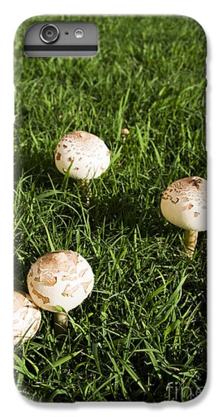 Field Of Mushrooms IPhone 6 Plus Case by Jorgo Photography - Wall Art Gallery