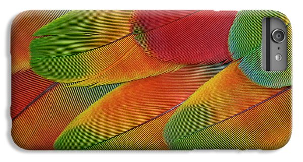 Harlequin Macaw Wing Feather Design IPhone 6 Plus Case by Darrell Gulin
