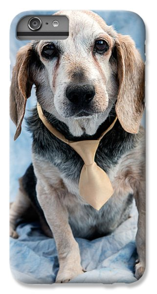 Dog iPhone 6 Plus Case - Kippy Beagle Senior by Iris Richardson