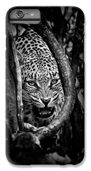 Africa iPhone 6 Plus Case - 'leopard's Lair' by John Moulds