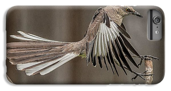 Mockingbird  IPhone 6 Plus Case by Rick Barnard