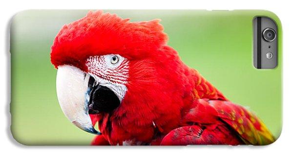 Parrot IPhone 6 Plus Case