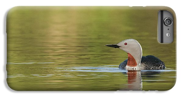 Loon iPhone 6 Plus Case - Red-throated Loon by Ken Archer