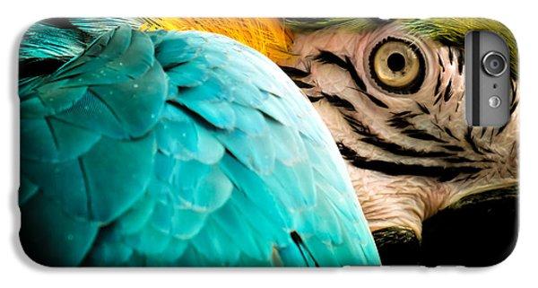 Macaw iPhone 6 Plus Case - Sleeping Beauty by Karen Wiles