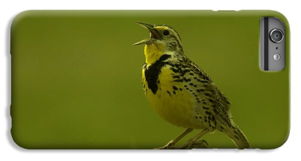 The Meadowlark Sings IPhone 6 Plus Case