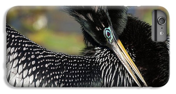Usa, Florida, Everglades National Park IPhone 6 Plus Case