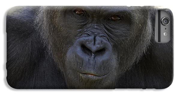 Western Lowland Gorilla Portrait IPhone 6 Plus Case by San Diego Zoo