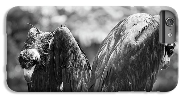White-backed Vultures In The Rain IPhone 6 Plus Case by Pan Xunbin