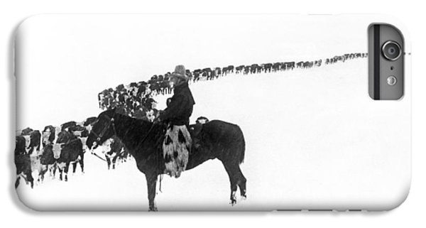 Cow iPhone 6 Plus Case - Wintertime Cattle Drive by Charles Belden