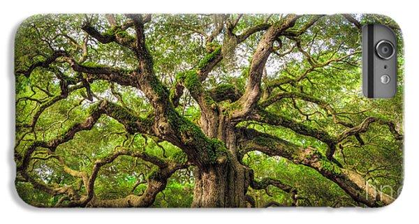 Angel Oak Tree Of Life IPhone 6 Plus Case
